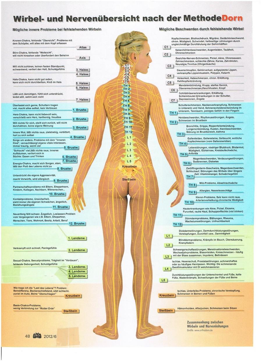 ERKRANKUNGEN - Psynergie - Heilung auf der geistigen Ebene